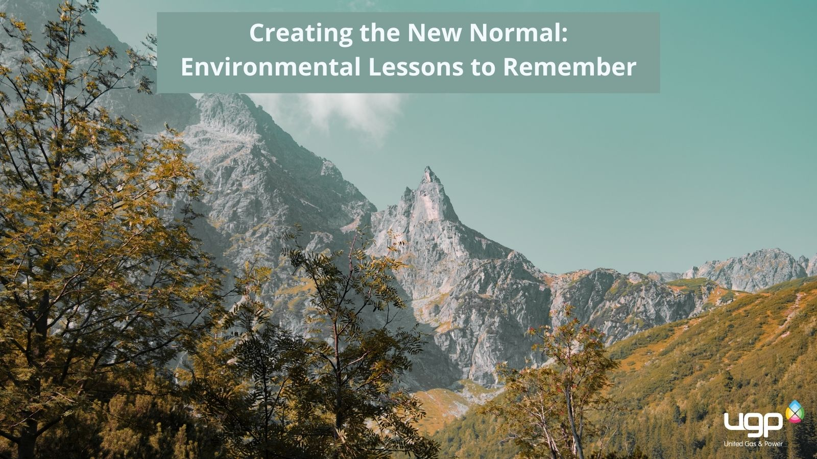 United Gas Power Creating the New Normal: Environmental Lessons to Remember
