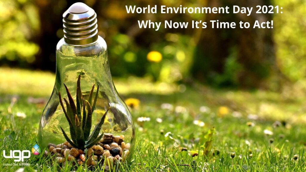 World Environment Day 2021: Why Now It's Time to Act!